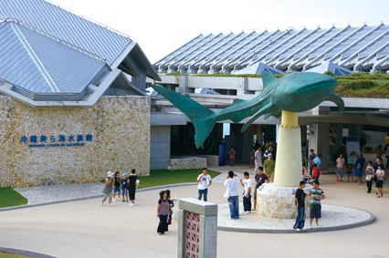 Okinawa Churaumi Aquarium Stock Photo | Getty Images